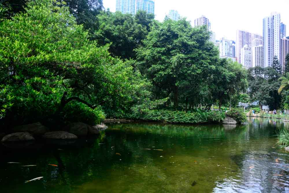 A beautiful park offers a bit of serenity in the heart of the busy city.