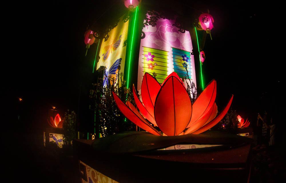Beautiful lanterns lit up Hong Kong park.