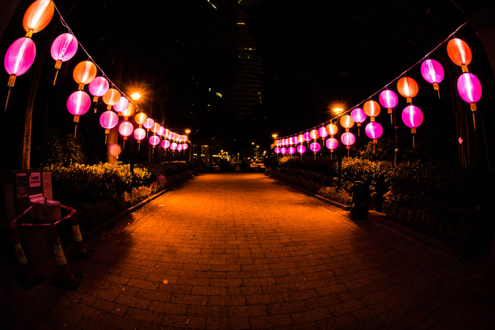 Hong Kong Park all decked out in lanterns was the first sign that the Mid-Autumn Festival was approaching.