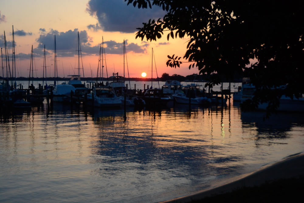 We savored or last days in our lovely little town of Stuart, Florida.
